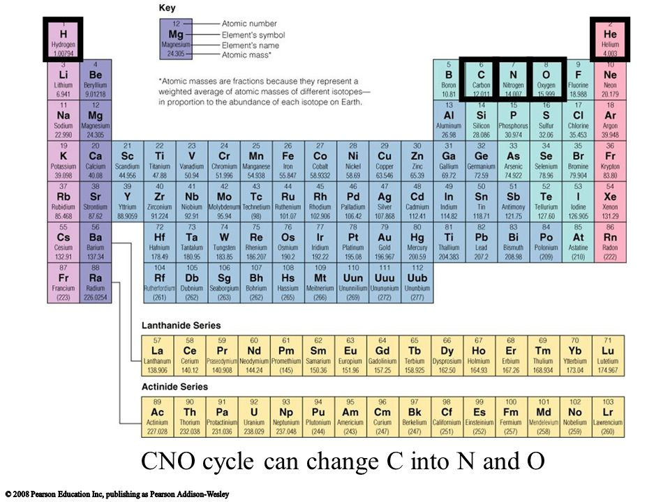 CNO cycle can change C into N and O