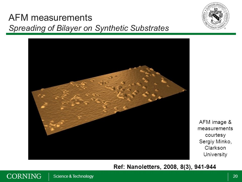 20Science & Technology AFM measurements Spreading of Bilayer on Synthetic Substrates AFM image & measurements courtesy Sergiy Minko, Clarkson Universi