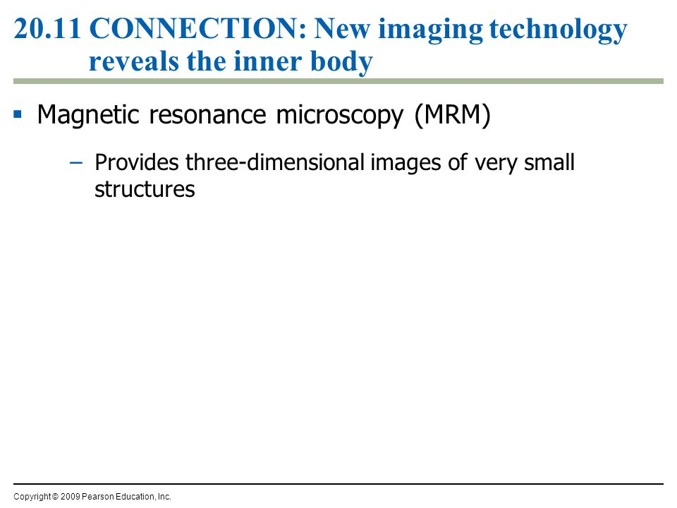  Magnetic resonance microscopy (MRM) –Provides three-dimensional images of very small structures Copyright © 2009 Pearson Education, Inc.