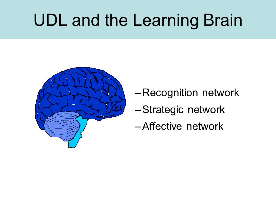 UDL and the Learning Brain –Recognition network –Strategic network –Affective network