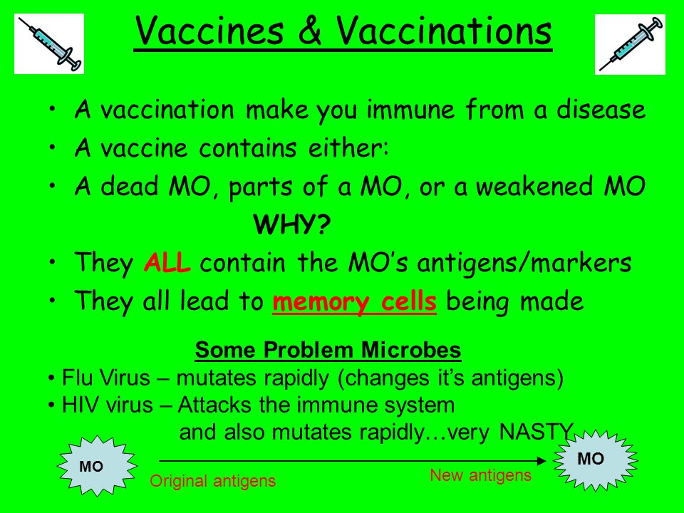 Vaccines & Vaccinations A vaccination make you immune from a disease A vaccine contains either: A dead MO, parts of a MO, or a weakened MO WHY? They A
