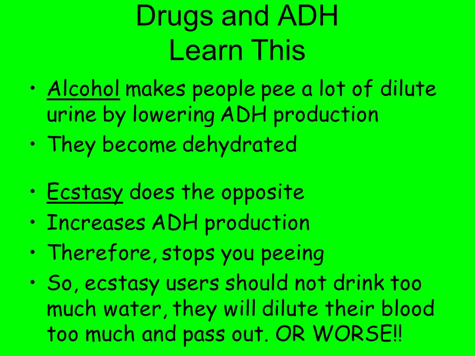 Drugs and ADH Learn This Alcohol makes people pee a lot of dilute urine by lowering ADH production They become dehydrated Ecstasy does the opposite In