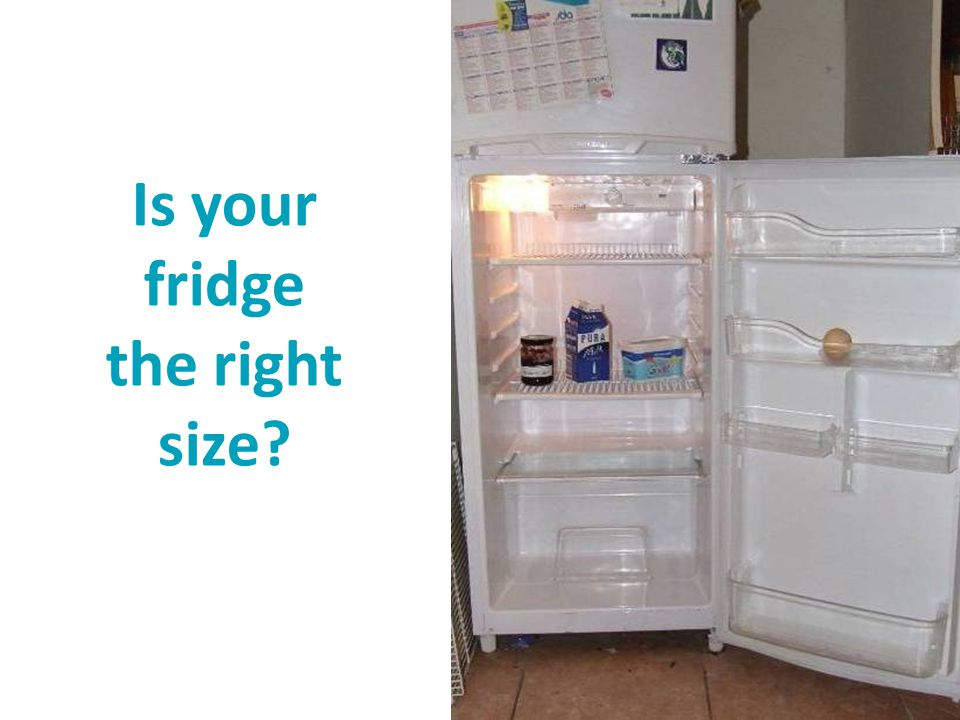 Is your fridge the right size?