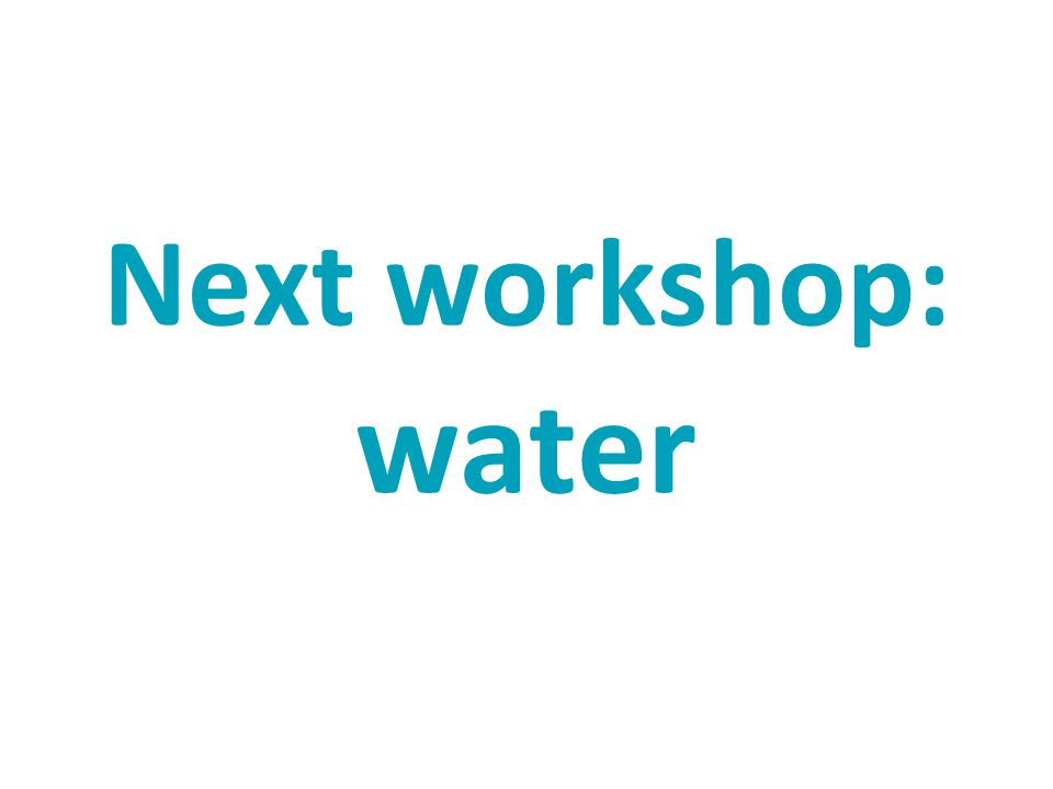Next workshop: water