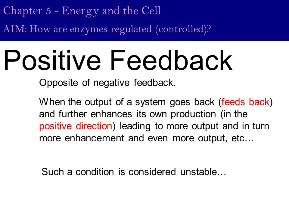 Positive Feedback When the output of a system goes back (feeds back) and further enhances its own production (in the positive direction) leading to more output and in turn more enhancement and even more output, etc… Chapter 5 - Energy and the Cell AIM: How are enzymes regulated (controlled).
