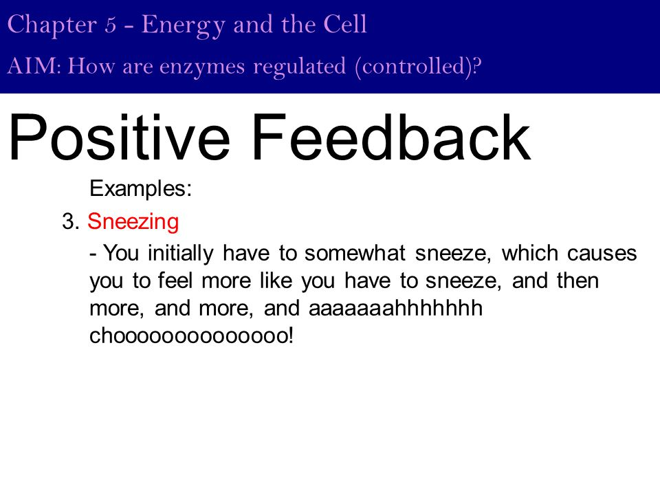 Positive Feedback Chapter 5 - Energy and the Cell AIM: How are enzymes regulated (controlled).