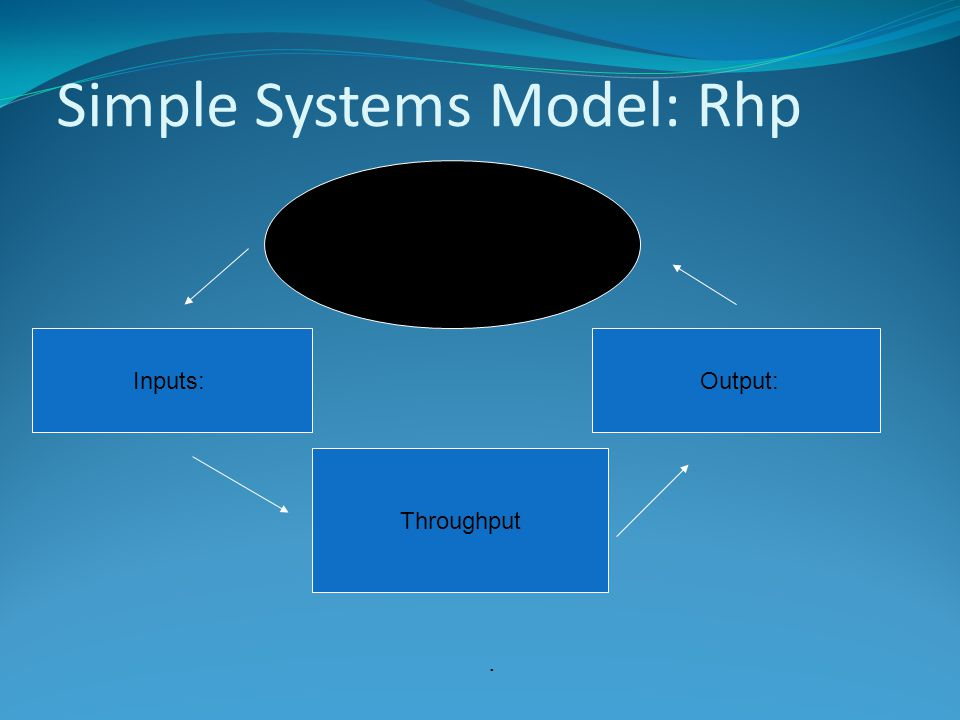 Simple Systems Model: Rhp Inputs: Throughput Output: Environment:.