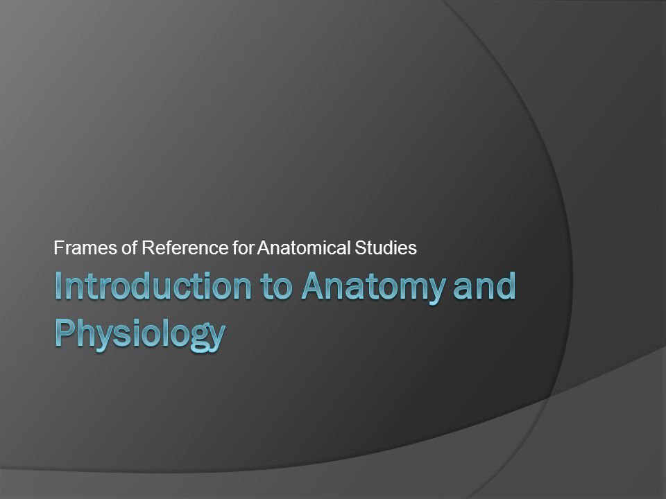 Frames of Reference for Anatomical Studies
