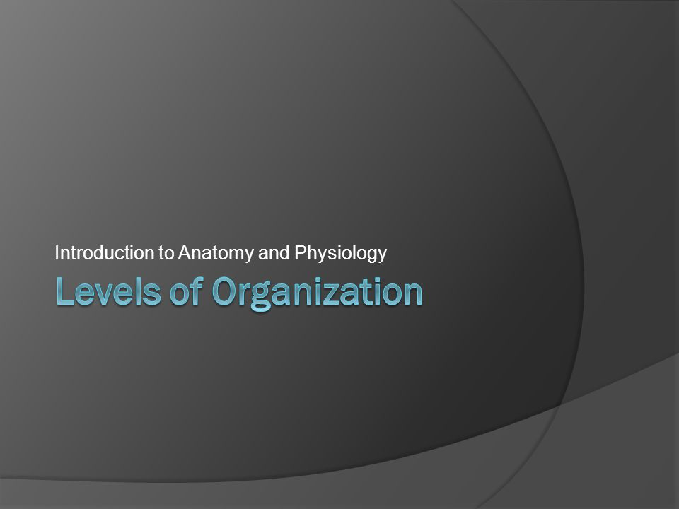 Introduction to Anatomy and Physiology