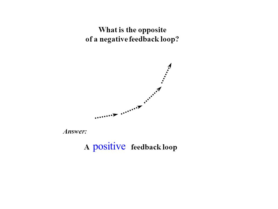 What is the opposite of a negative feedback loop? Answer: A positive feedback loop