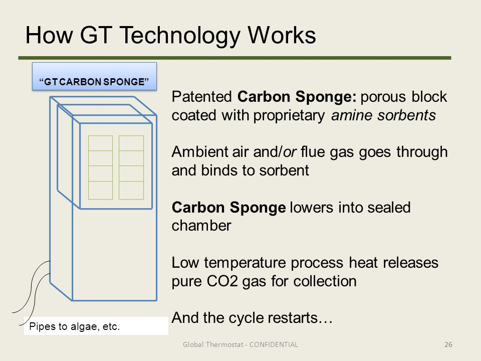 GT CARBON SPONGE Pipes to algae, etc.