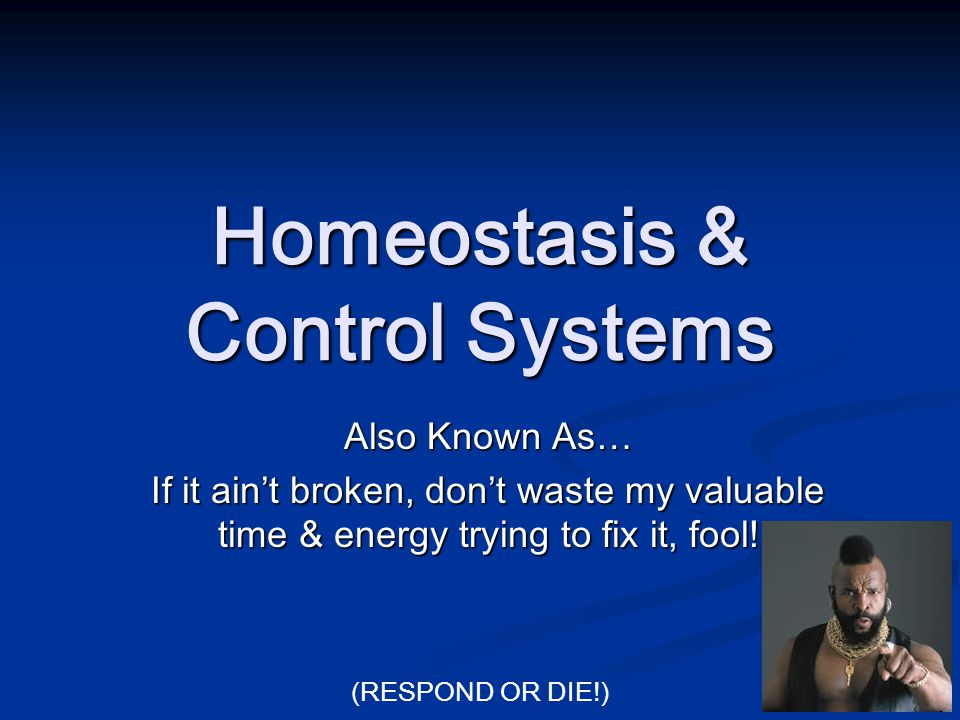 Homeostasis & Control Systems Also Known As… If it ain't broken, don't waste my valuable time & energy trying to fix it, fool! (RESPOND OR DIE!)
