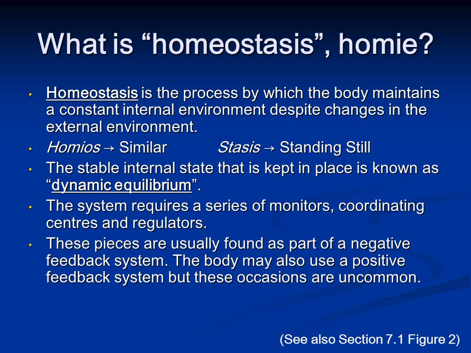 What is homeostasis , homie.