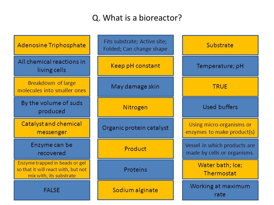 Q.What is a bioreactor.