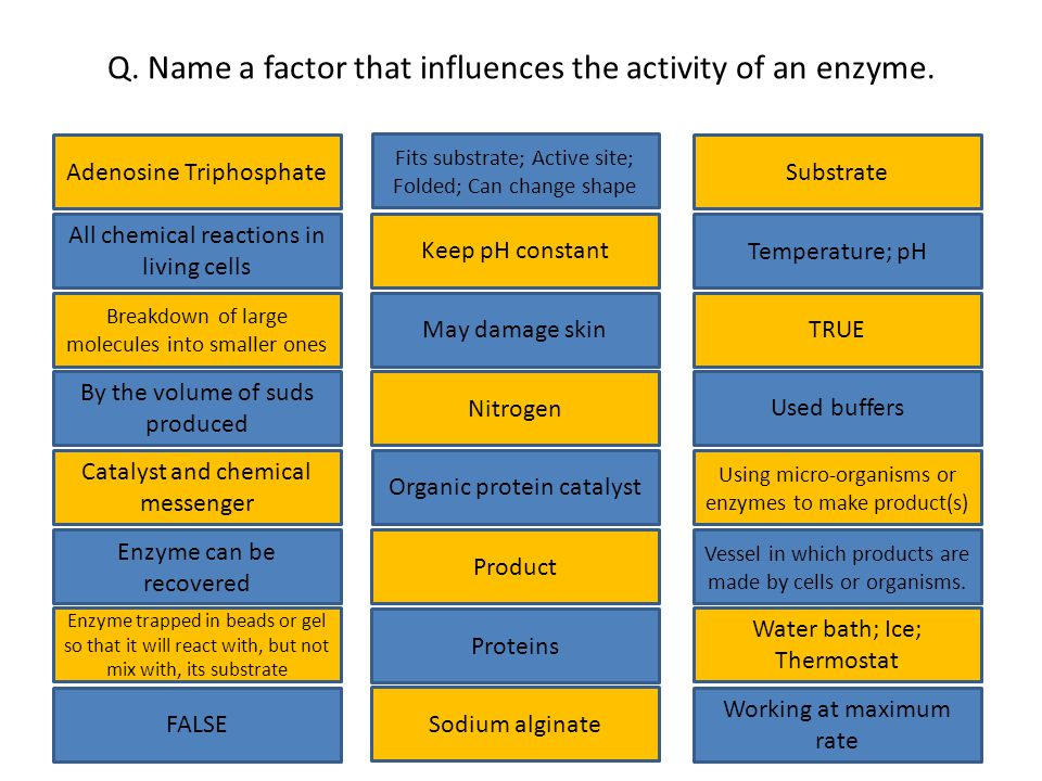 Q.Name a factor that influences the activity of an enzyme.