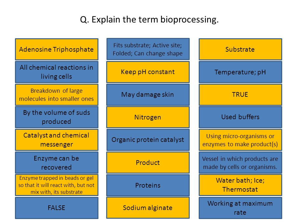 Q.Explain the term bioprocessing.