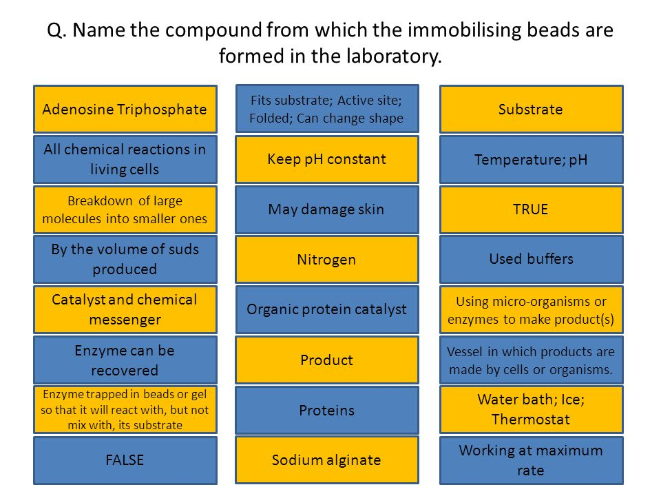 Q.Name the compound from which the immobilising beads are formed in the laboratory.