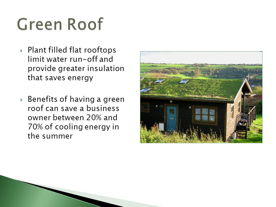  Plant filled flat rooftops limit water run-off and provide greater insulation that saves energy  Benefits of having a green roof can save a busines