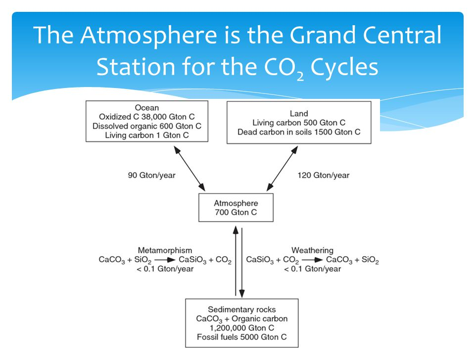 The Atmosphere is the Grand Central Station for the CO 2 Cycles