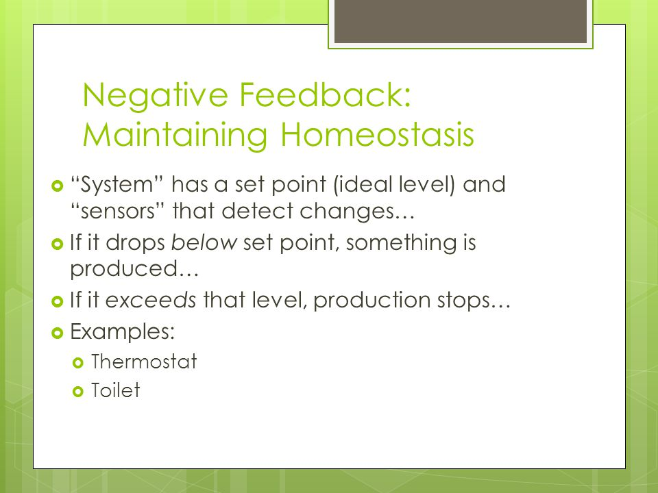 """Negative Feedback: Maintaining Homeostasis  """"System"""" has a set point (ideal level) and """"sensors"""" that detect changes…  If it drops below set point,"""