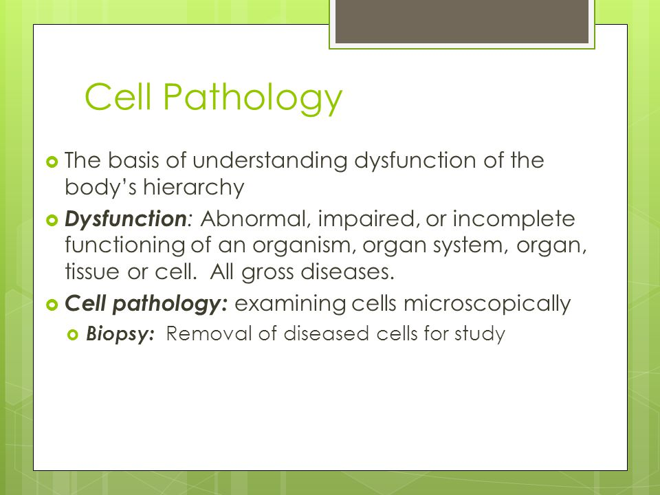 Cell Pathology  The basis of understanding dysfunction of the body's hierarchy  Dysfunction : Abnormal, impaired, or incomplete functioning of an or