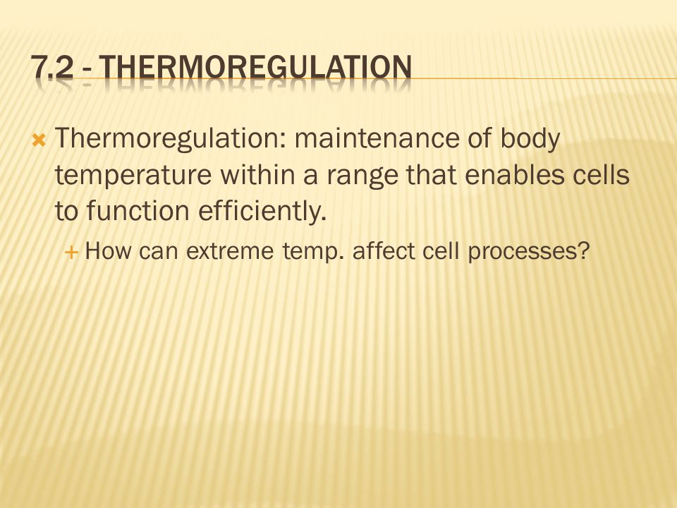  Thermoregulation: maintenance of body temperature within a range that enables cells to function efficiently.