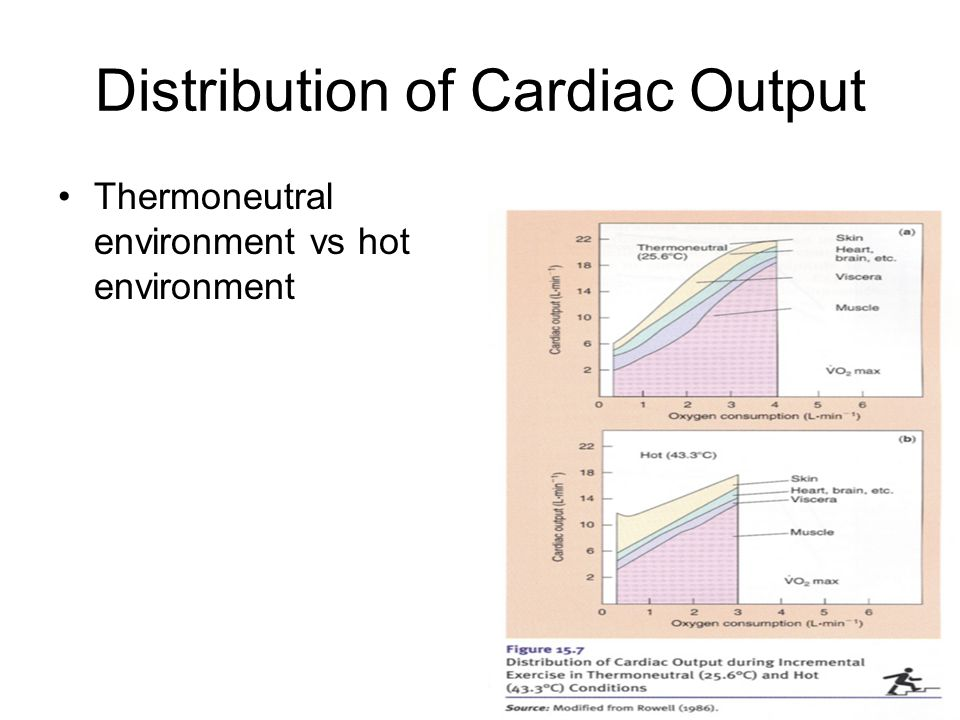 Distribution of Cardiac Output Thermoneutral environment vs hot environment