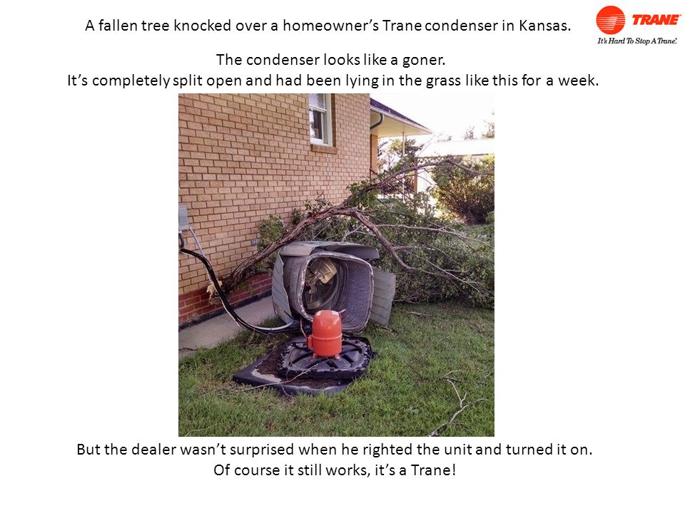 A fallen tree knocked over a homeowner's Trane condenser in Kansas.