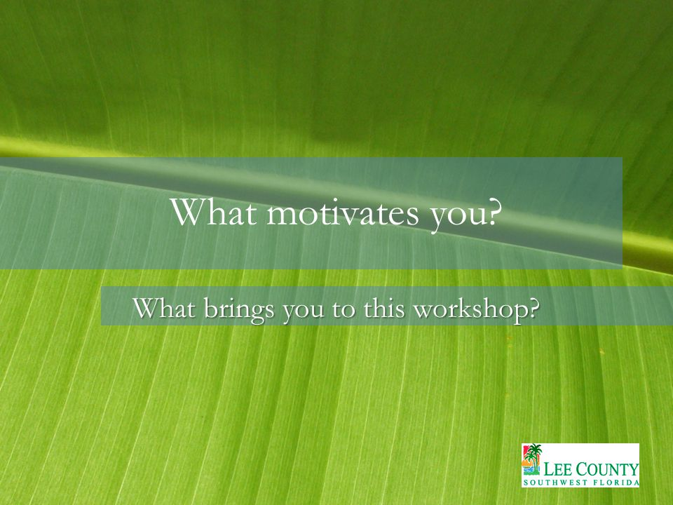 What motivates you What brings you to this workshop