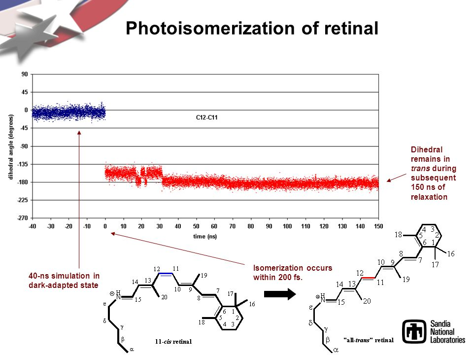 Photoisomerization of retinal 40-ns simulation in dark-adapted state Isomerization occurs within 200 fs.