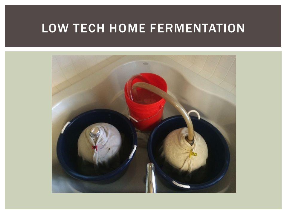 LOW TECH HOME FERMENTATION