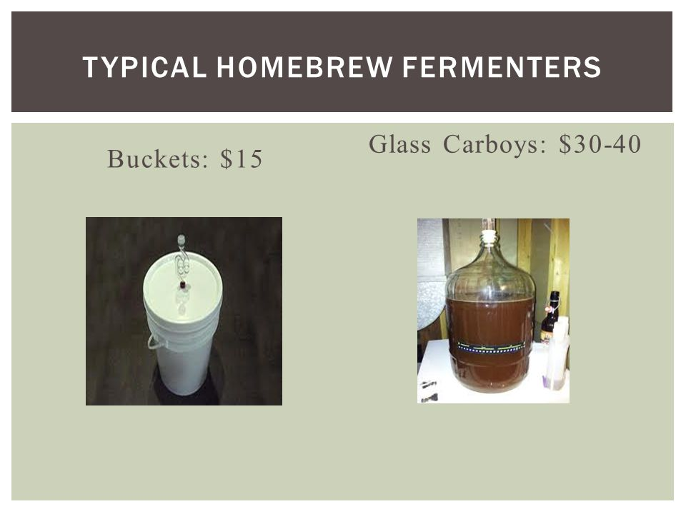 Buckets: $15 Glass Carboys: $30-40 TYPICAL HOMEBREW FERMENTERS