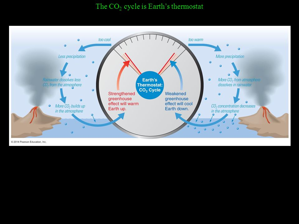 The CO 2 cycle is Earth's thermostat