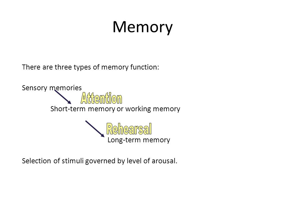 Memory There are three types of memory function: Sensory memories Short-term memory or working memory Long-term memory Selection of stimuli governed b