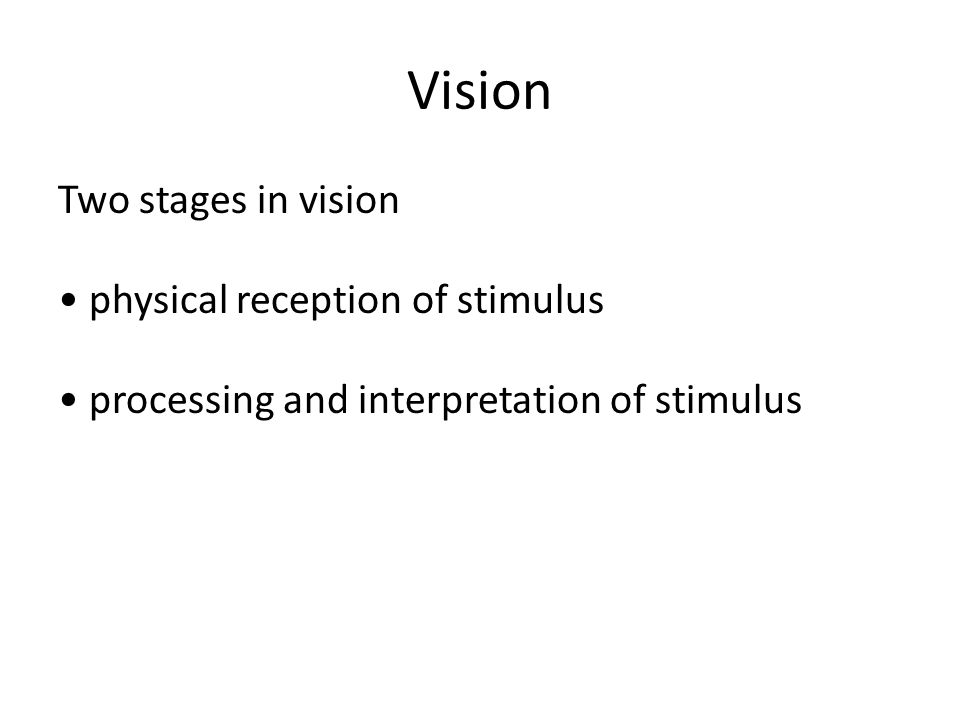 Vision Two stages in vision physical reception of stimulus processing and interpretation of stimulus