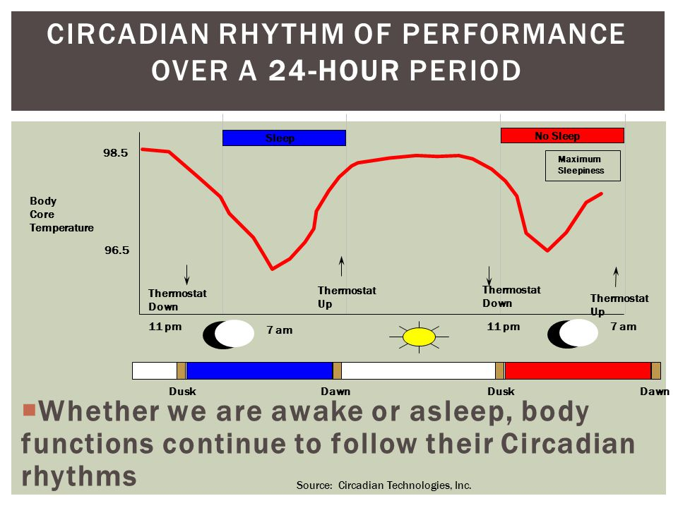 CIRCADIAN RHYTHM OF PERFORMANCE OVER A 24-HOUR PERIOD  Whether we are awake or asleep, body functions continue to follow their Circadian rhythms Body Core Temperature 98.5 96.5 11 pm 7 am 11 pm7 am Thermostat Down Thermostat Up Thermostat Down Thermostat Up Sleep No Sleep Maximum Sleepiness DuskDawn DuskDawn Source: Circadian Technologies, Inc.