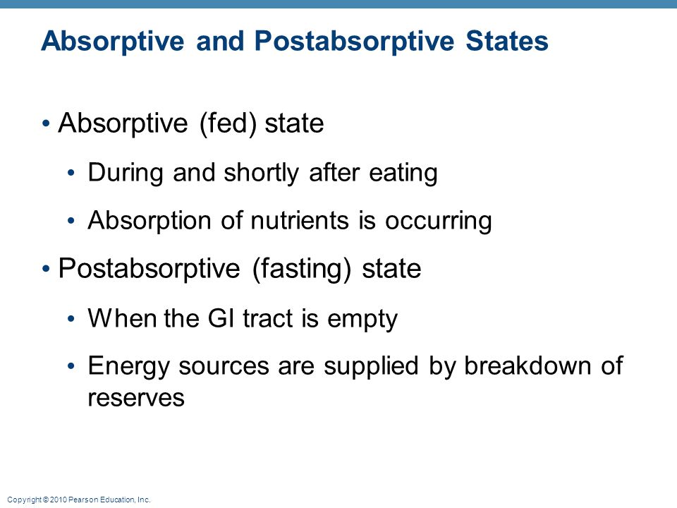 Copyright © 2010 Pearson Education, Inc. Absorptive and Postabsorptive States Absorptive (fed) state During and shortly after eating Absorption of nut