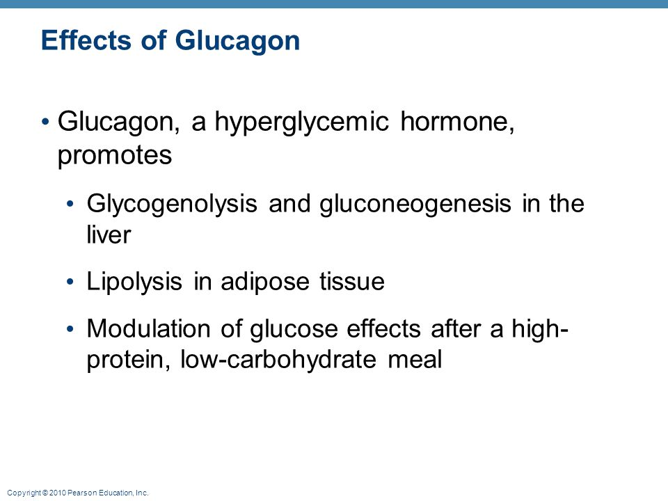 Copyright © 2010 Pearson Education, Inc. Effects of Glucagon Glucagon, a hyperglycemic hormone, promotes Glycogenolysis and gluconeogenesis in the liv