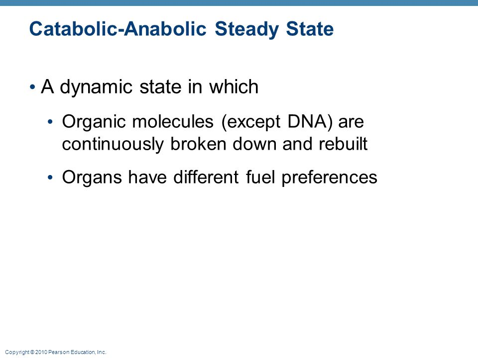 Copyright © 2010 Pearson Education, Inc. Catabolic-Anabolic Steady State A dynamic state in which Organic molecules (except DNA) are continuously brok
