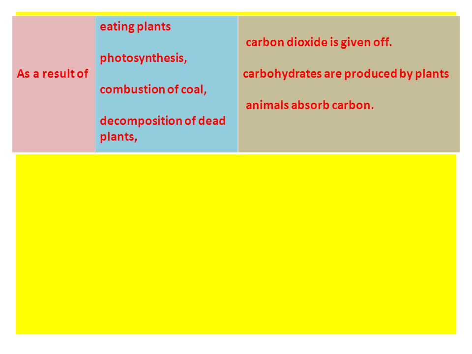 As a result of eating plants, animals absorb carbon. As a result of photosynthesis, carbohydrates are produced by plants. As a result of combustion of
