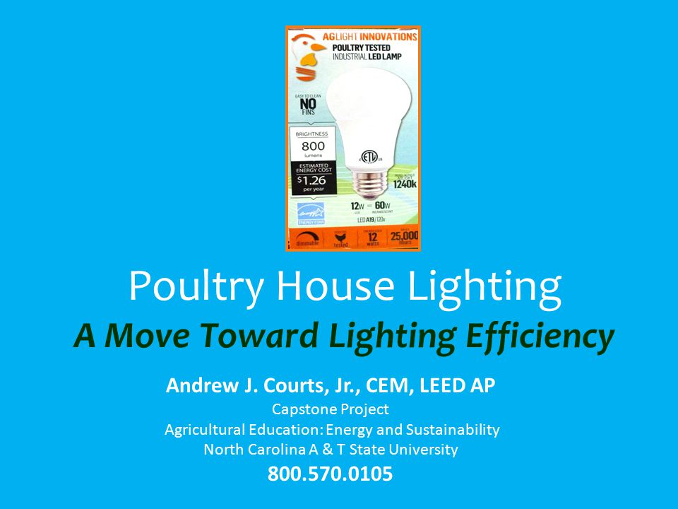 Poultry House Lighting A Move Toward Lighting Efficiency Andrew J.