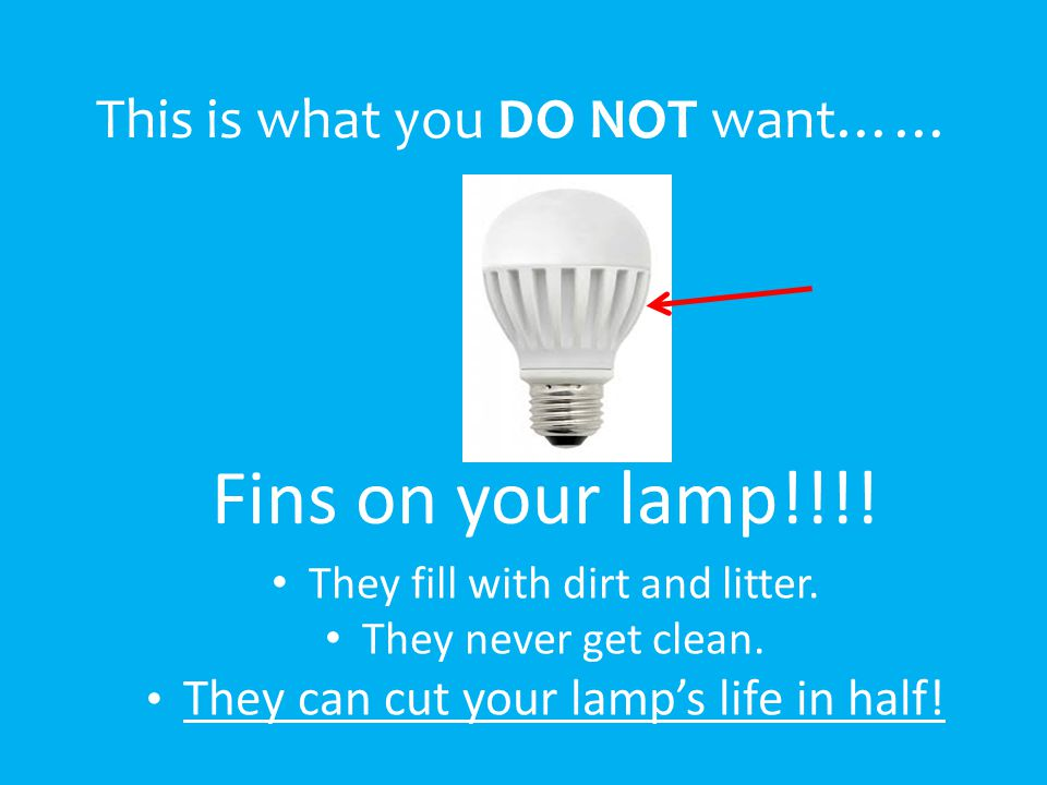 This is what you DO NOT want…… Fins on your lamp!!!.