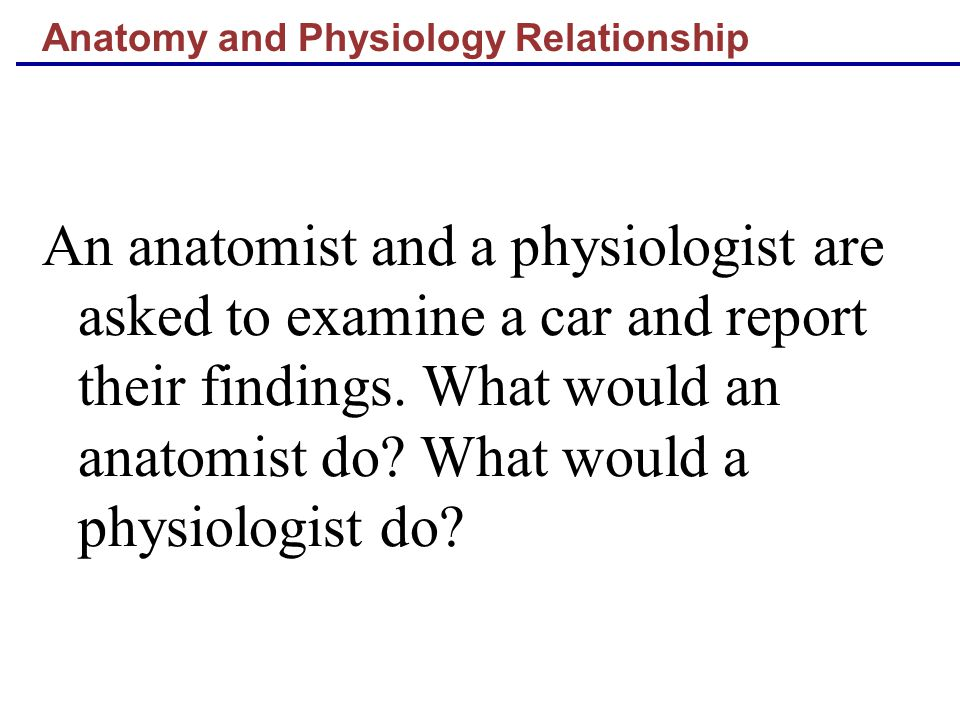 Anatomy and Physiology Relationship An anatomist and a physiologist are asked to examine a car and report their findings.