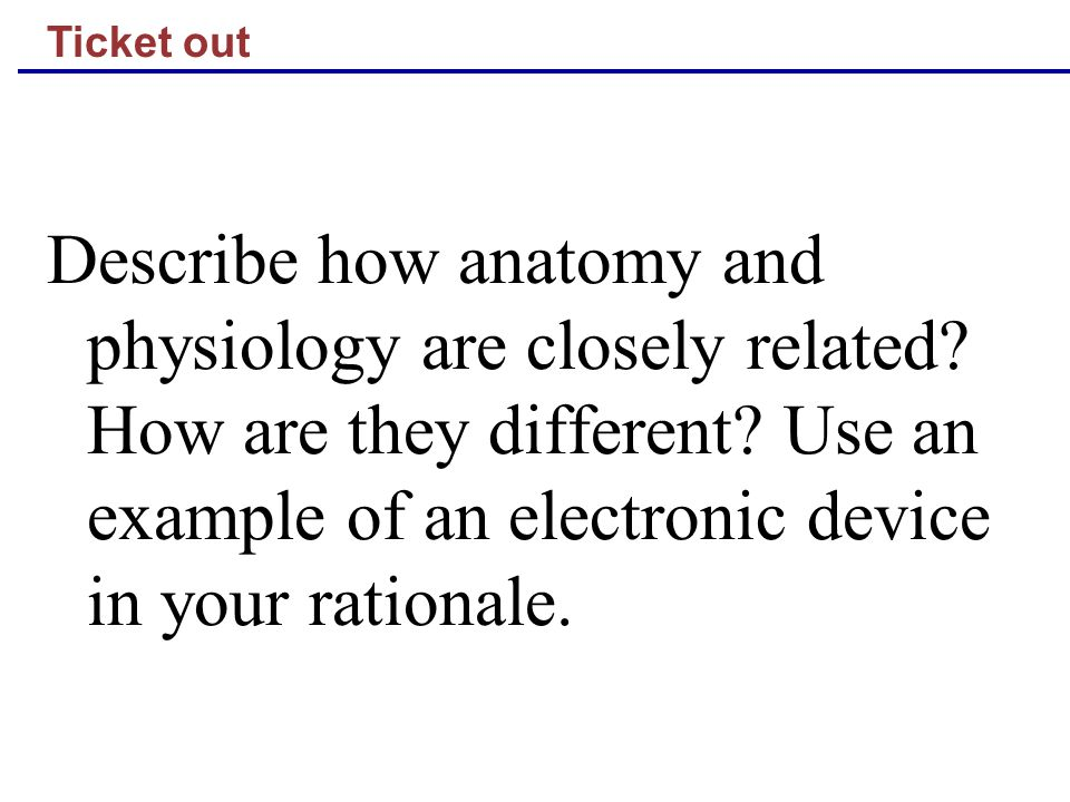 Ticket out Describe how anatomy and physiology are closely related? How are they different? Use an example of an electronic device in your rationale.