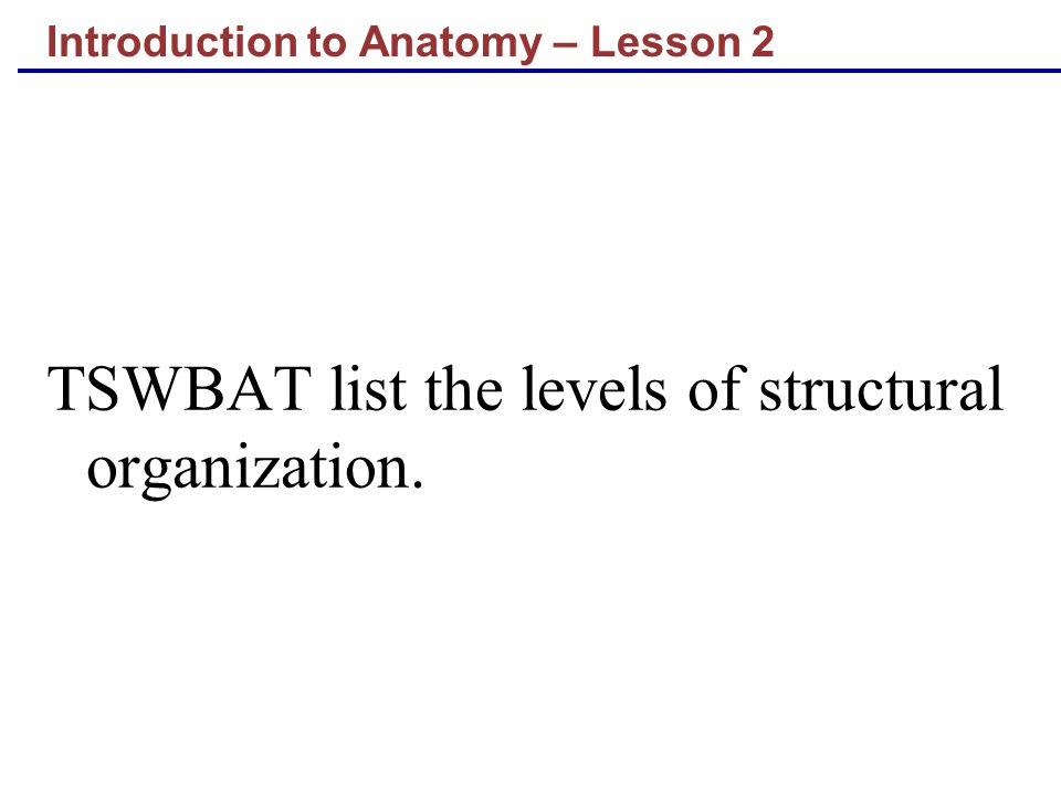 Introduction to Anatomy – Lesson 2 TSWBAT list the levels of structural organization.