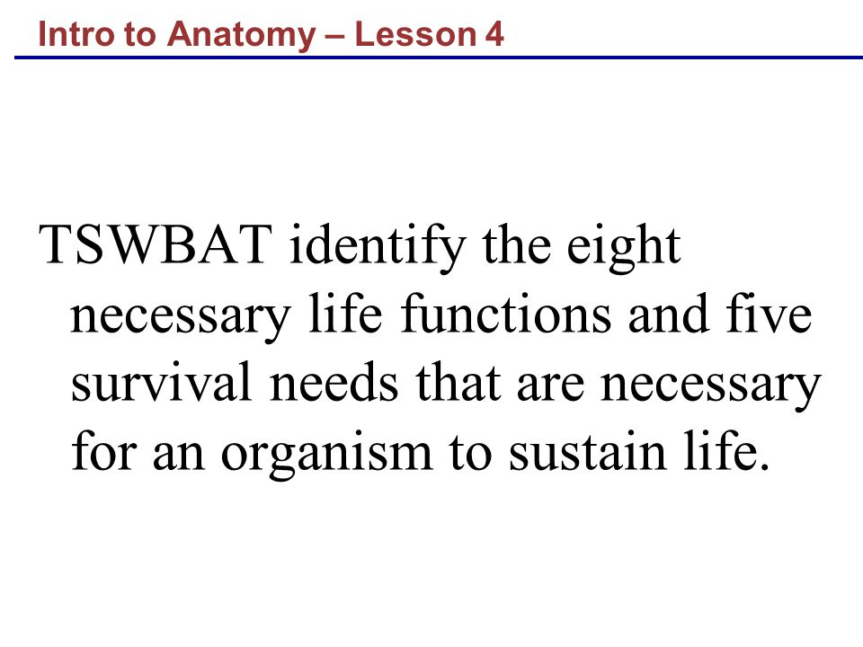 Intro to Anatomy – Lesson 4 TSWBAT identify the eight necessary life functions and five survival needs that are necessary for an organism to sustain l