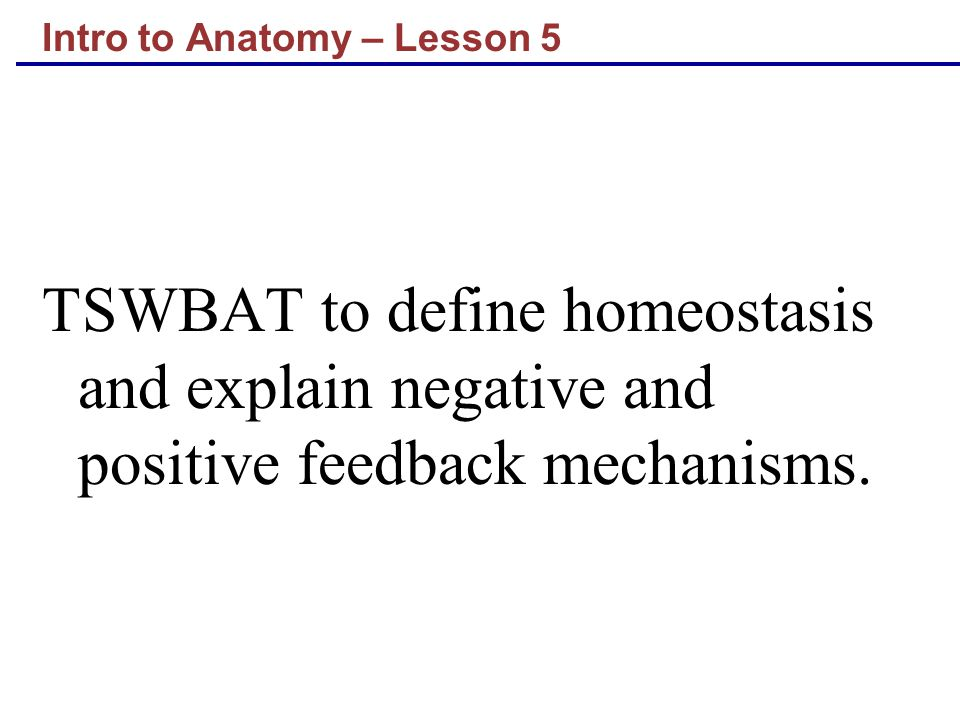 Intro to Anatomy – Lesson 5 TSWBAT to define homeostasis and explain negative and positive feedback mechanisms.
