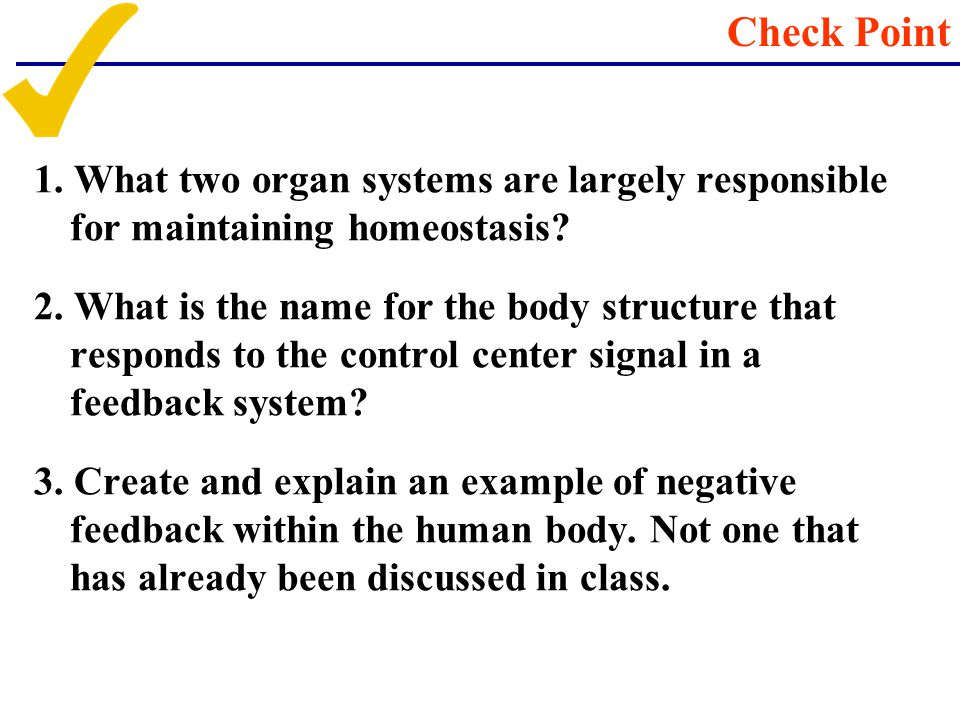 1. What two organ systems are largely responsible for maintaining homeostasis? 2. What is the name for the body structure that responds to the control