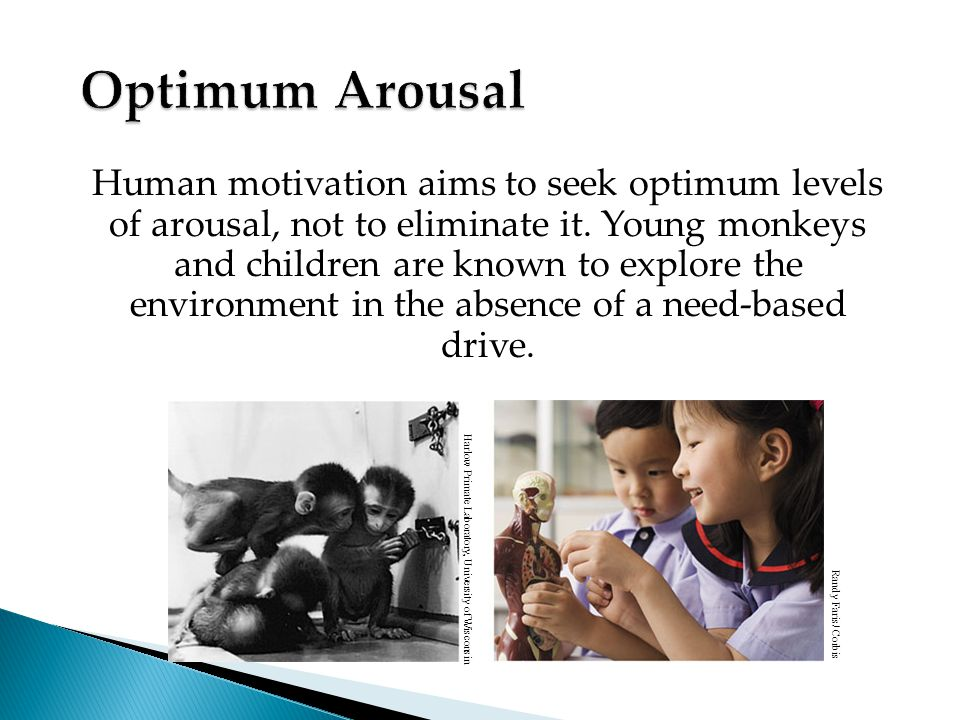 Human motivation aims to seek optimum levels of arousal, not to eliminate it.