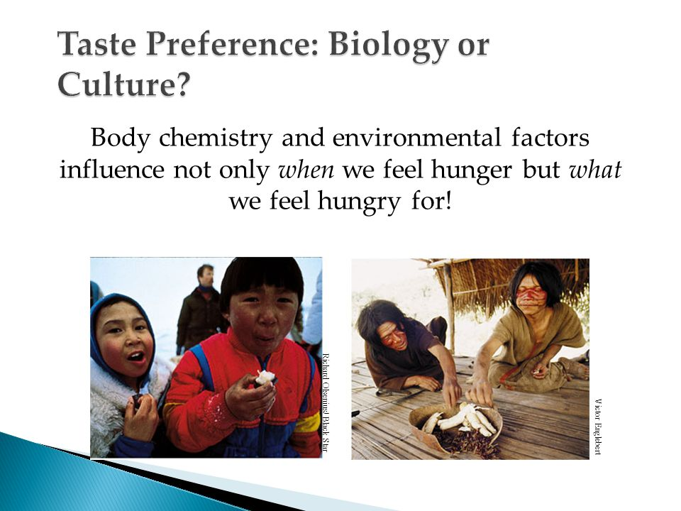 Body chemistry and environmental factors influence not only when we feel hunger but what we feel hungry for.